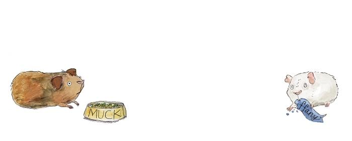 Gecko Press website banner, brown guinea pig and white guinea pig