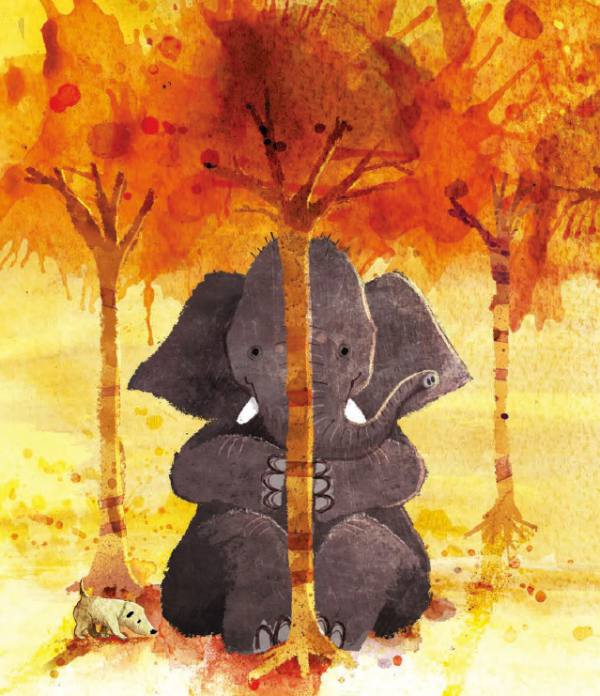 David Barrow Have You Seen Elephant picture book print